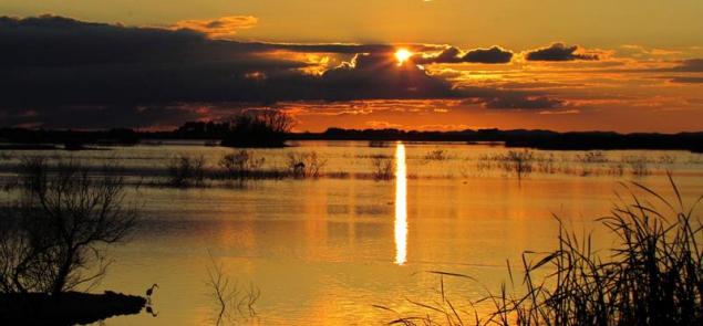 Los parques nacionales cumplen 100 años como abanderados de la biodiversidad